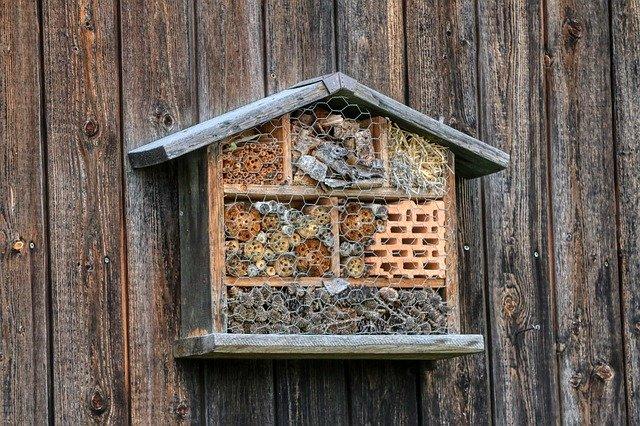 wildbienenhotel selber bauen