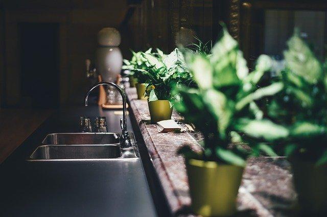 Regal für Küchenkräuter und Blumen